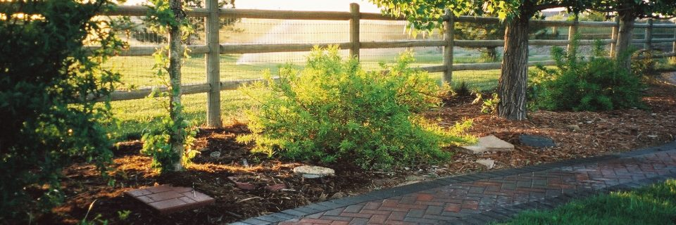 Providing Landscaping & Irrigation  Services for Over 20 Years 970-568-3807